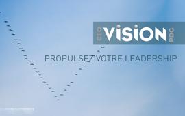 VISION PDG : DÉVOILEMENT DE LA PROGRAMMATION 2017